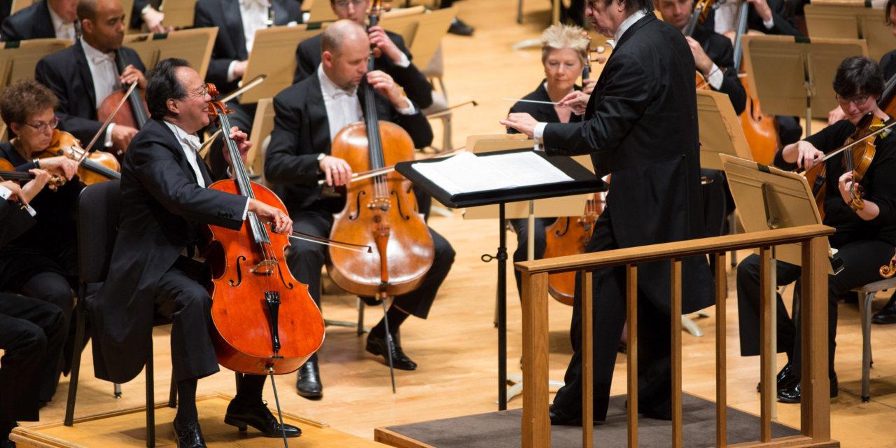 Top 10 Greatest Cello Pieces You Should Know - OCTALOVE COM