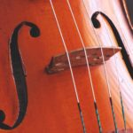 TOP 10 Acoustic Cello Strings